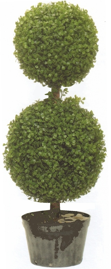 2277  34 in Boxwood Double Ball Outdoor