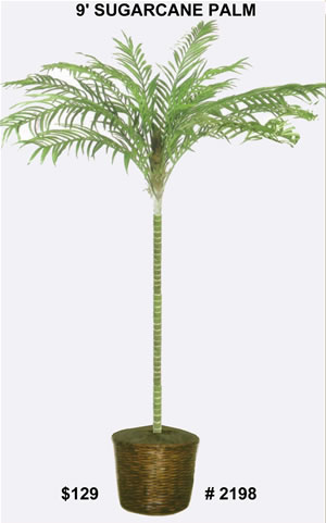 2198 9 ft silk sugarcane palm tree
