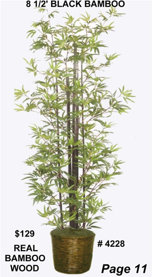 4228 8 ft silk black bamboo tree
